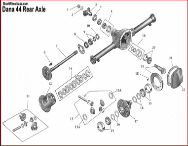 Dana Differential on gm 12 bolt rear axle diagram
